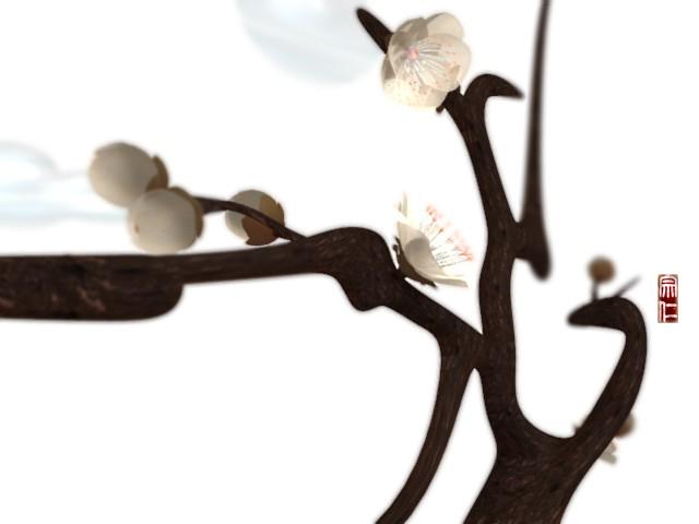 2009 花2
