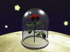 rose planet
